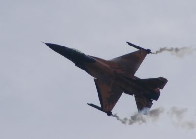 eastbourne airshow 2009 (46)